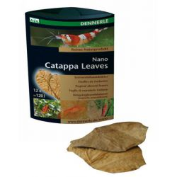 Dennerle Nano Catappa Leaves – Листья миндального дерева 12 шт