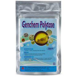 Genchem Polytase