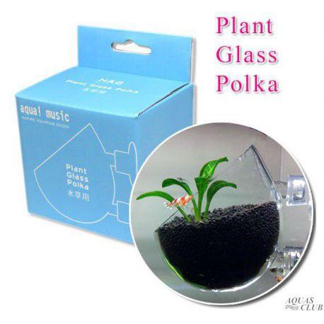 Горшок стеклянный для растений