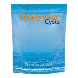 Artemia Cyst 550 г – Артемия салина, яйца
