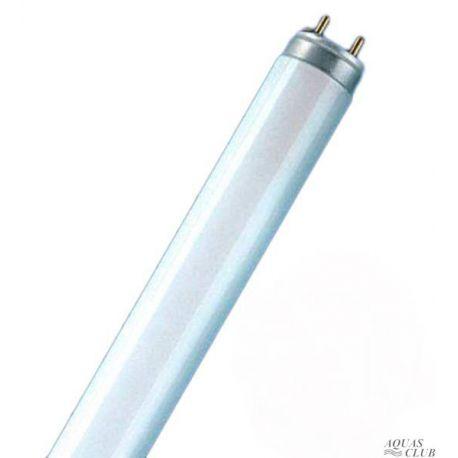 Лампа T8 PHILIPS
