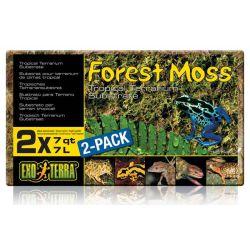 EXO TERRA Forest Moss 2x7 л