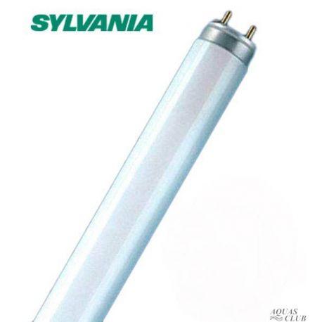 Лампа T8 SYLVANIA